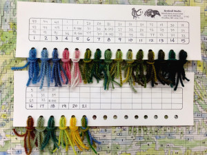 Here is the threading card to show color combinations matched with a number to go on the graph.